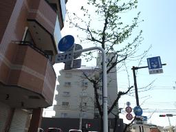 写真: 標識 自転車歩道通行可 ...